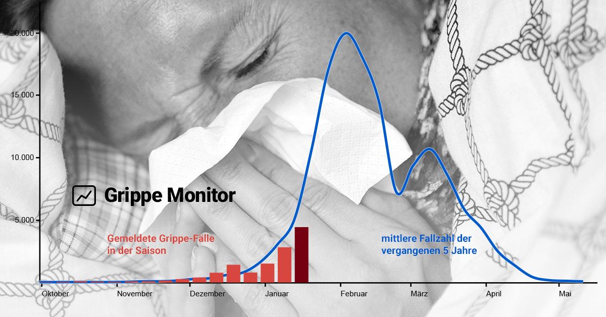 Grippe Monitor So Hat Die Grippe Deutschland Im Griff